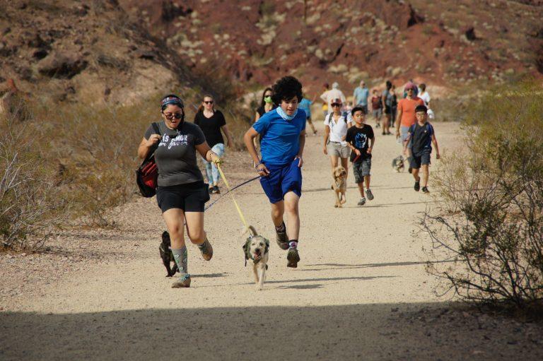 Hike and Heal 2021